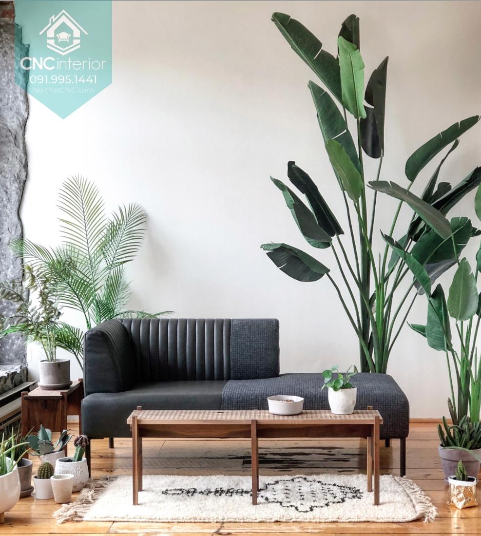 Phong cách tropical trong nội thất
